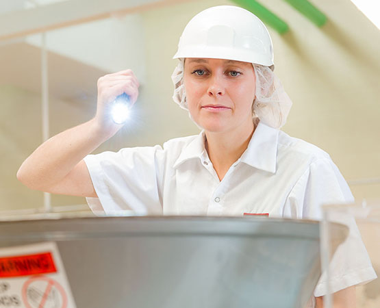 A woman wearing AIB auditor uniform and a hair net