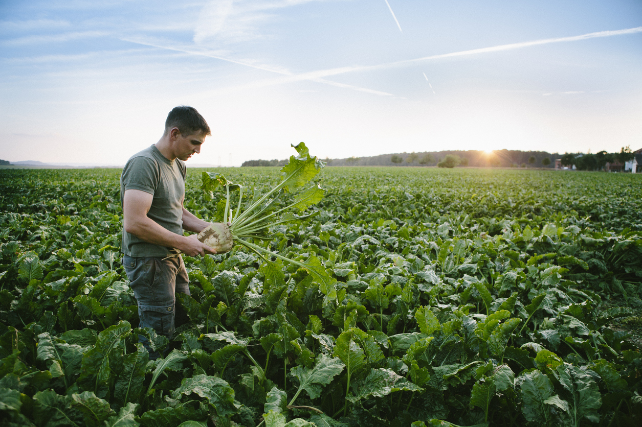 FDA Helps Produce Farmers and Fresh-Cut Produce Processors by Providing Draft FSMA Guidance