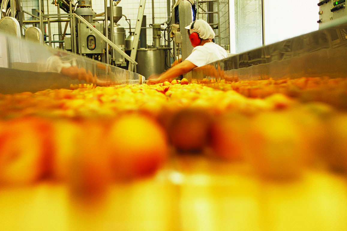 Food Contact Packaging Manufacturing Facilities